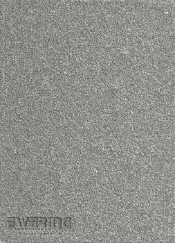 Rasch Textil Vista 5 23-213675 silber Mica-Tapete glänzend