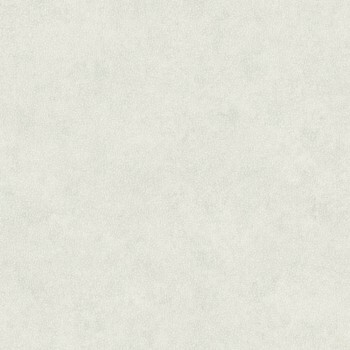 Casadeco - Utah Texdecor Vlies-Tapete 36-UTA29580503 hell-grau Muster