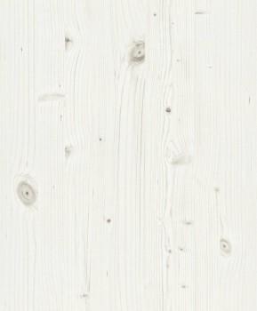 Rasch Passepartout 7-606232 Vliestapete beige Esszimmer