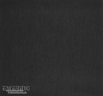 Caselio Vitamine 36-VTA57579310 schwarz Uni Vliestapete Glitzer
