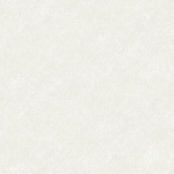 Rasch Textil Skagen 23-021028 Vliestapete beige Uni