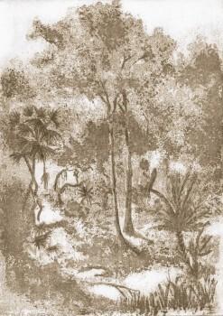 Baumkronen Ahorn-Gelb Wandbild 62-ODED191602 Tenue de Ville ODE