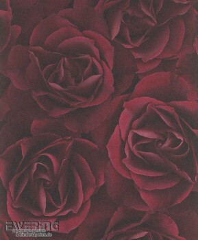 Rasch Crispy Paper 7-525625 Vliestapete rot Rosenblüten Weinrot