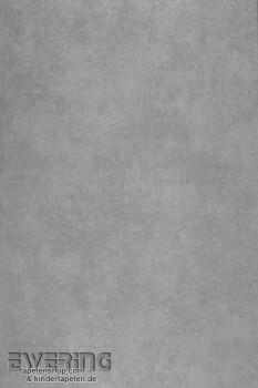 36-GEO26909302 Casadeco - Géode Texdecor Uni dunkel-grau Vlies