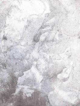 Casadeco - Utah Texdecor Wandbild 36-UTA29689107 Vlies grau Mond