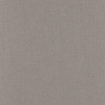 Tapete Uni Steingrau Caselio - Linen II 36-LINN68521992