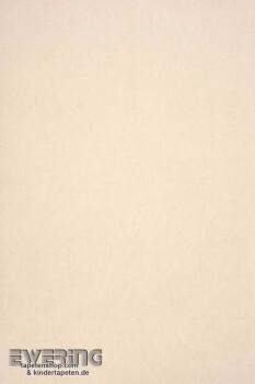 Casadeco Infinity 36-INF14981233 Uni Vliestapete creme-grau