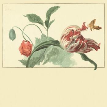 Eijffinger Masterpiece 55-358118, Vliestapete, Fototapete Blumen