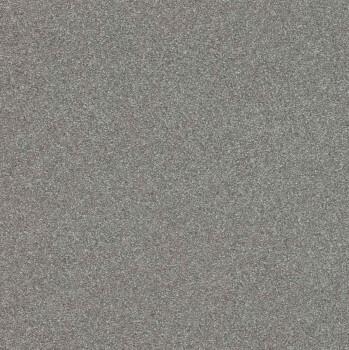 Rasch Passepartout 7-606690 Vliestapete grau Uni