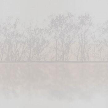 36-IRS68829013 Caselio - Iris Texdecor Tapete Landschaft beige-grau