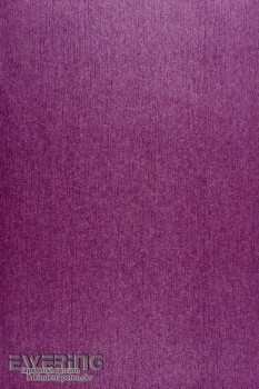 36-INF24825105 Casadeco Infinity Vliestapete violett Uni schimmernd