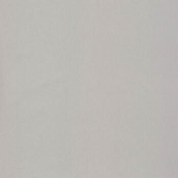 Caselio - Iris Texdecor 36-IRS58859100 silber Vliestapete Glanz