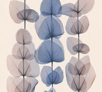 34245-5 Vlies-Tapete X-Ray AS Creation blau-aubergine große Blätter