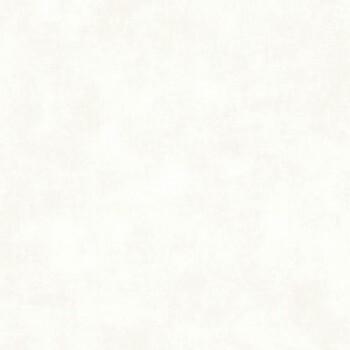 Texdecor Casadeco - Utah 36-UTA26900120 Vliestapete weiß grau Uni
