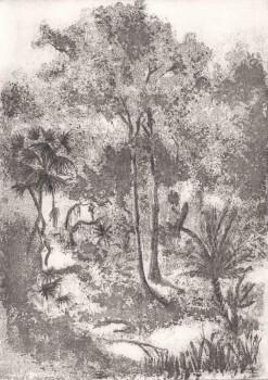 Grau Wandbild Baumkrone Wald Tenue de Ville ODE 62-ODED191605