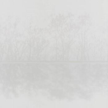Texdecor 36-IRS68827146 Caselio - Iris Landschaft Tapete beige