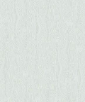 Texdecor 36-IRS68807092 Caselio - Iris hell-grün Muster-Tapete