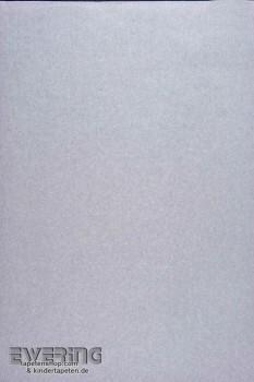 Casadeco Infinity 36-INF24826530 silber-grau schimmer Unitapete