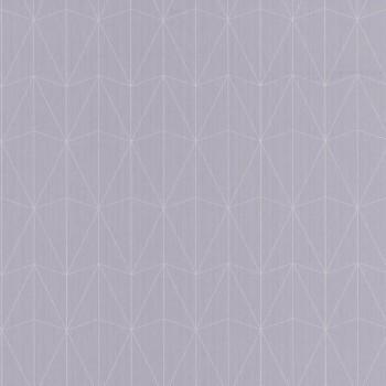 Texdecor Caselio - Scarlett 36-SRL100449090 grafisches Muster hellgrau Vlies