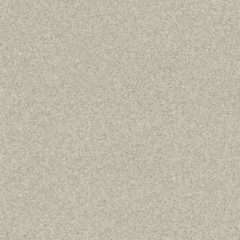Rasch Passepartout 7-606645 Vliestapete beige Uni