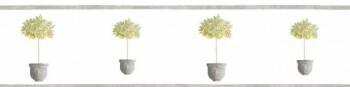 Borte Texdecor Caselio - Bon Appetit 36-BAP68442020 Baum Vlies grau