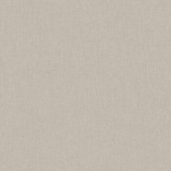Texdecor Caselio - Swing 36-SNG68521716 grau-beige Unitapete Flur