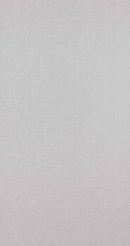 Neo Royal 12-218641 BN/Voca Flur neutral-grau Punkte Glanz Tapete