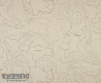 Texdecor Casadeco - Marina 36-MRN25201310 Stoff beige Landkarte
