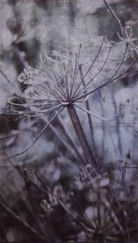 55-379106 Eijffinger Lino Wandbild blau Pusteblumen Vlies