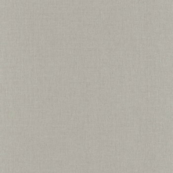 Tapete Uni Graubeige 36-LINN68521999 Caselio - Linen II