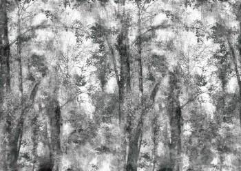 Wald Fototapete Grau Bäume Natur Tenue de Ville ODE 62-ODED191805