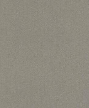 23-229430 Rasch Textil Abaca Vliestapete silber metallic Streifen