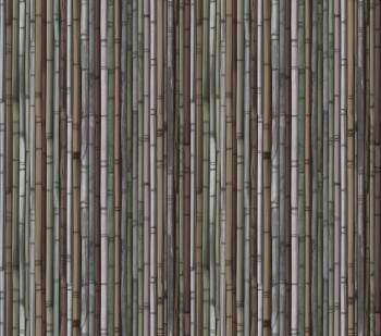 Wandbild Vlies Gelb-Grün Bambus 62-ODED190203 Tenue de Ville ODE