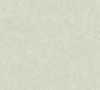 Vliestapete Neue Bude 2.0 AS Creation 8-36206-2, 362062 Uni beige-grau