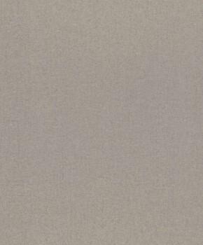 Rasch Textil 23-228808 Gravity Unitapete grau Vlies glatt