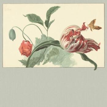 Eijffinger Masterpiece 55-358119, Vliestapete, Fototapete