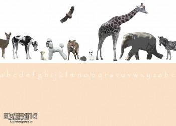 Wand-Bild Tiere Weiß
