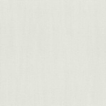 7-411867 Hyde Park Rasch grau-weiß Unitapete Vlies hell matt