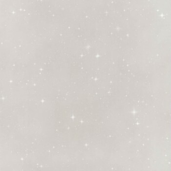36-IRS68839197 Caselio - Iris Texdecor Funkel grau Vliestapete