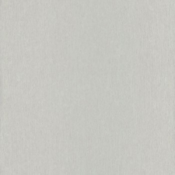 Caselio - Iris Texdecor 36-IRS62939122 silber Glanz Vliestapete
