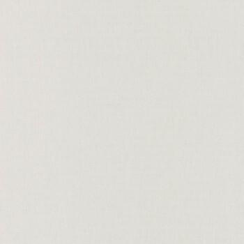 Tapete Uni Grauweiß 36-LINN68529099 Caselio - Linen II