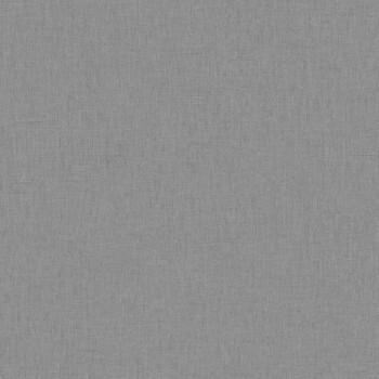 Caselio - Swing 36-SNG68529350 Texdecor grau Unitapete Vlies Flur