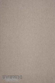Casadeco Infinity 36-INF17400603 sand-grau Vliestapete Uni