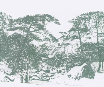 Wandbild Grün Wald Bäume Tenue de Ville SAUDADE 62-SAUD211315