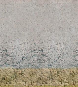 Beige Gelb Blumenwiese Wandbild 62-ODED191008 Tenue de Ville ODE